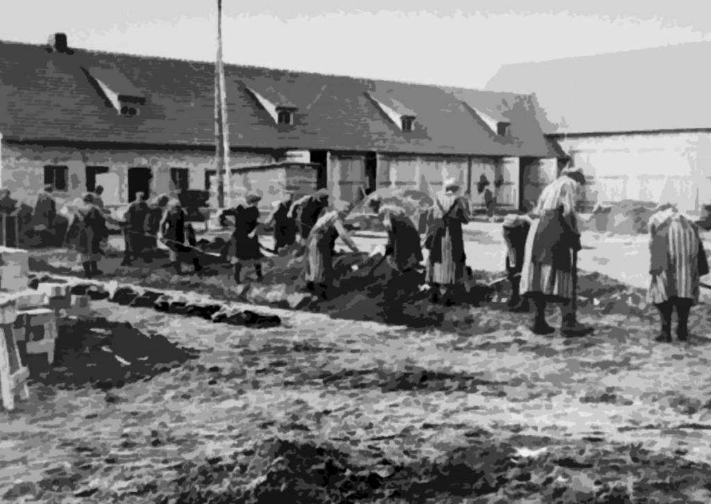 Forced labor at the Ravensbrück concentration camp
