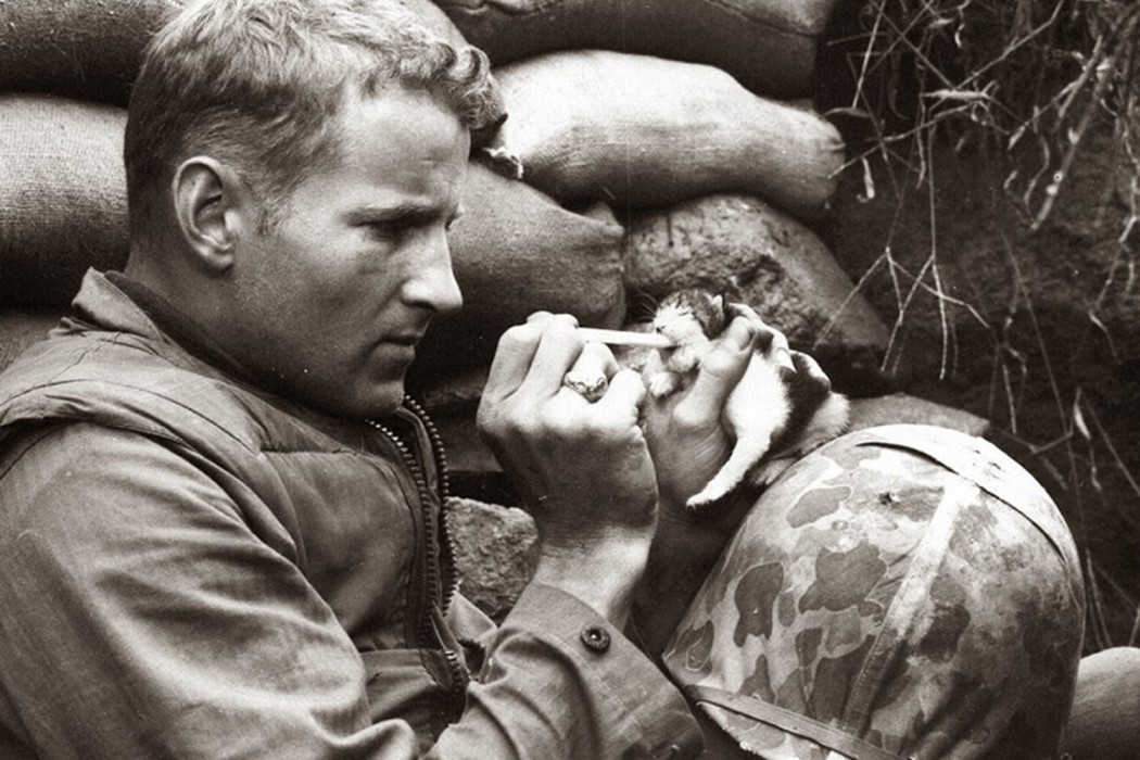 U.S. Marine and kitten, Korean War,1952