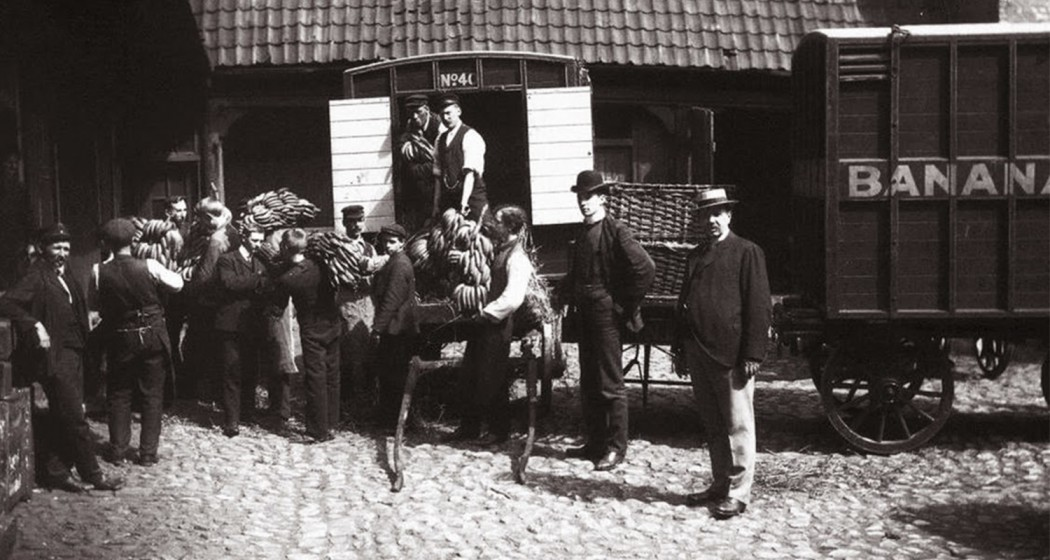 When the first bananas came to Norway, 1905