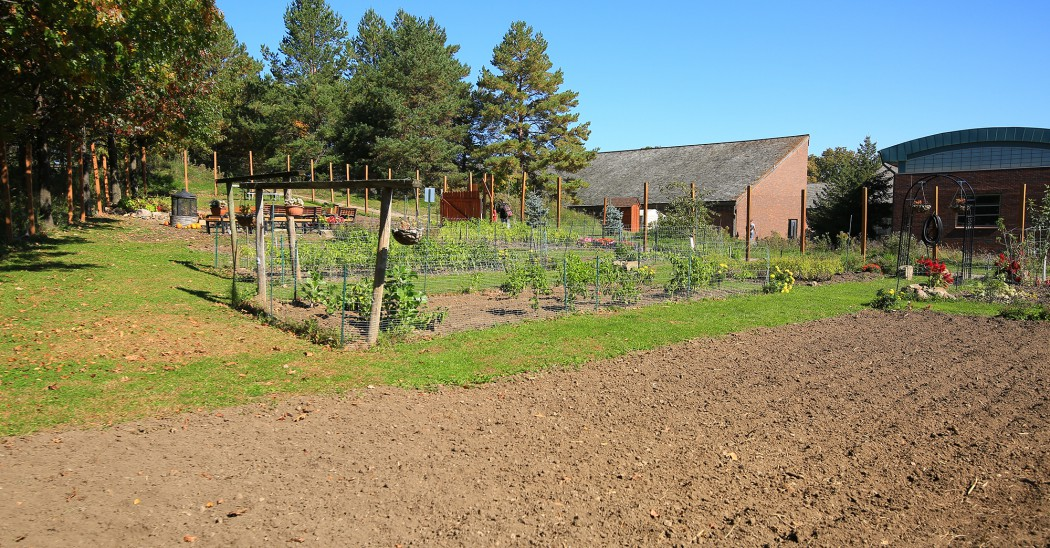 Inver Hills Metro State Community Garden Seeking Republic