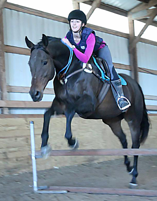 Jumping Ty with no bridle