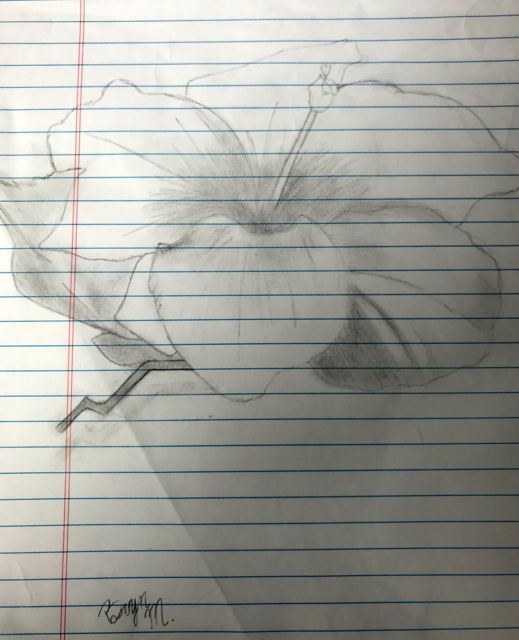 bryn_drawing_one