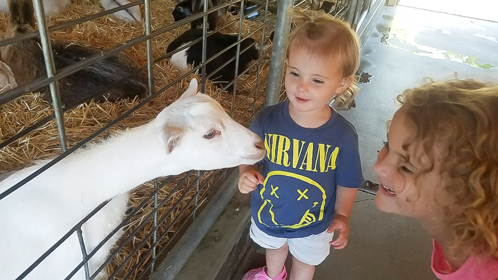 Daughters conferring with goat at Minnesota Zoo