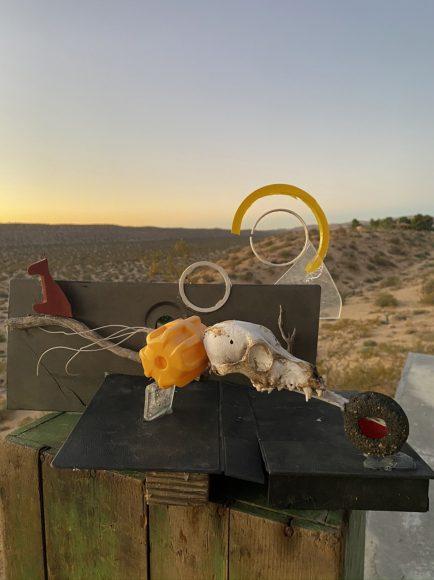 Day8: Sculpture: Coyote skull, VHS box, automobile dash components, container lids, plexiglass and assortedplastics