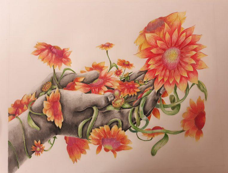 Blanketflower: Annabella Meyer
